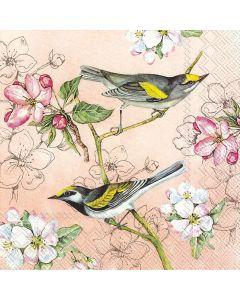 IHR Frokostserviet 33x33cm 20stk - Birds Symphony Abrikos