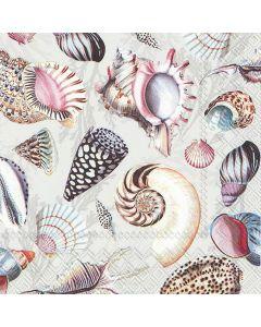 IHR Frokostserviet 33x33cm 20stk - Shells Of The Sea