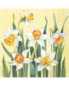 IHR Frokostserviet 33x33cm 20stk - White Narcissus Yellow